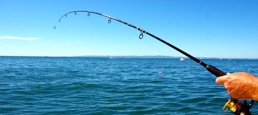 Norma da Semana: MAPA prorroga prazo de validade de autorizações de pesca