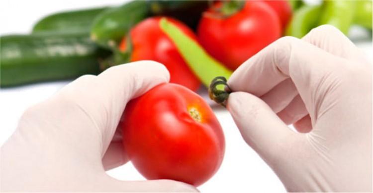 Segurança de alimentos: diferencial competitivo no mercado global