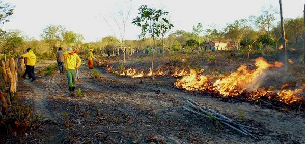 Em quais hipóteses é permitido o uso do fogo em vegetação?