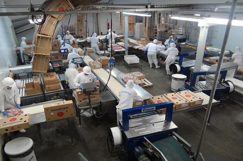 Pecuária sustentável: SSO na Indústria de Abate e Processamento de Carnes e Derivados