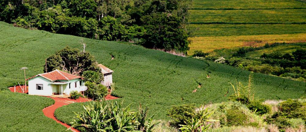 Restrição a crédito bancário deve impulsionar regularização ambiental de imóveis rurais