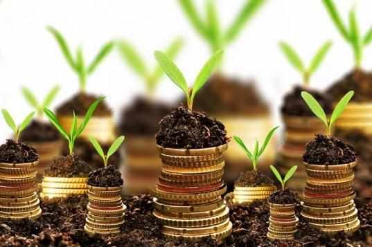 Entendendo a Taxa de Controle e Fiscalização Ambiental (TCFA)
