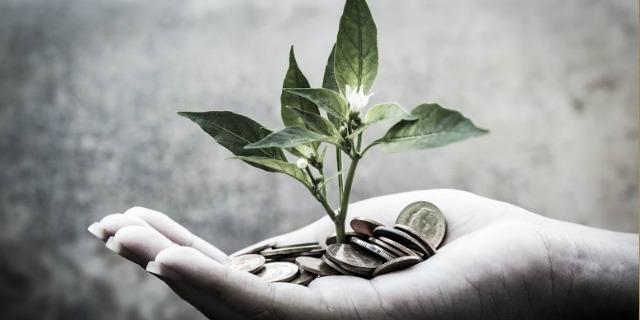 Paguei a Taxa de Fiscalização e Controle Ambiental em âmbito Estadual: terei que pagar novamente  em âmbito Federal?