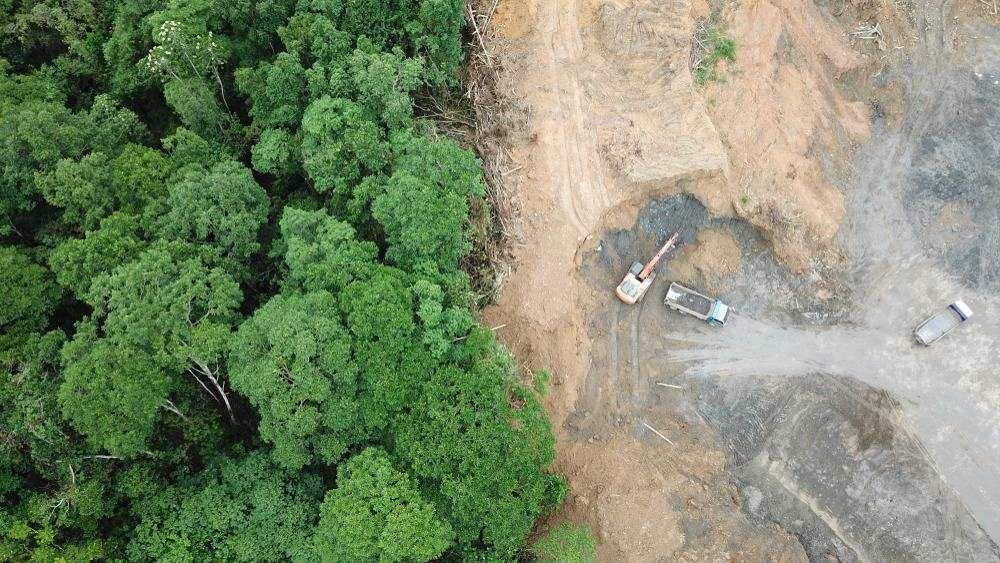 Área de preservação permanente suprimida
