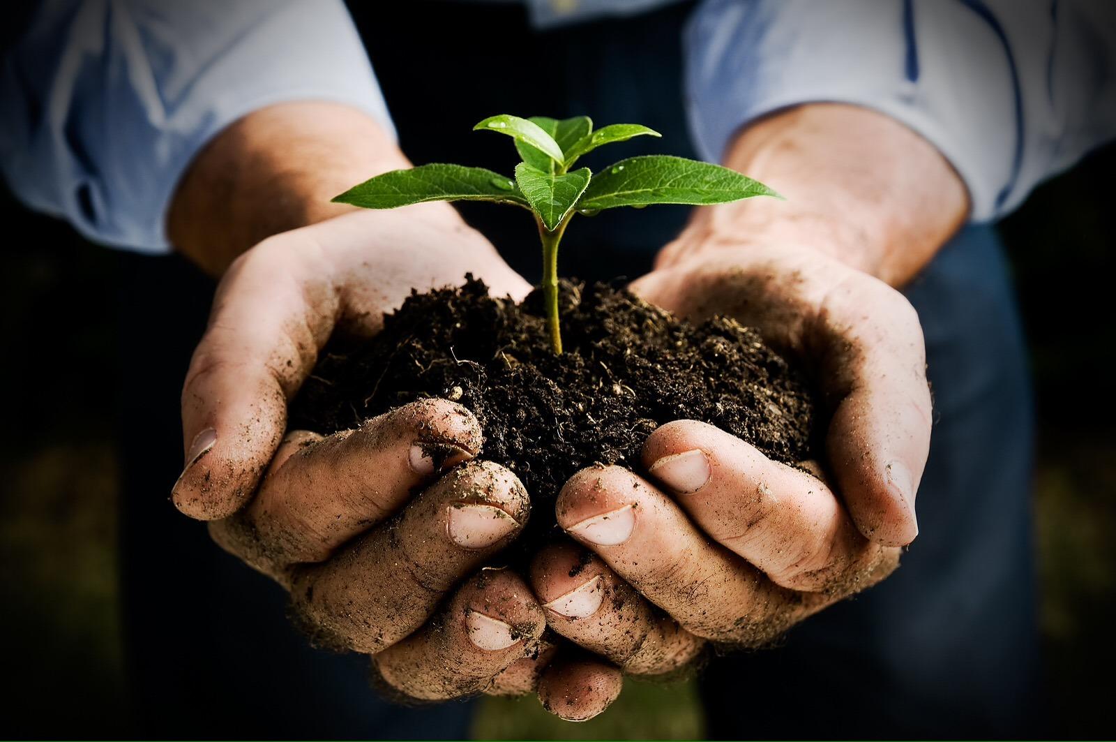 evitar passivos ambientais