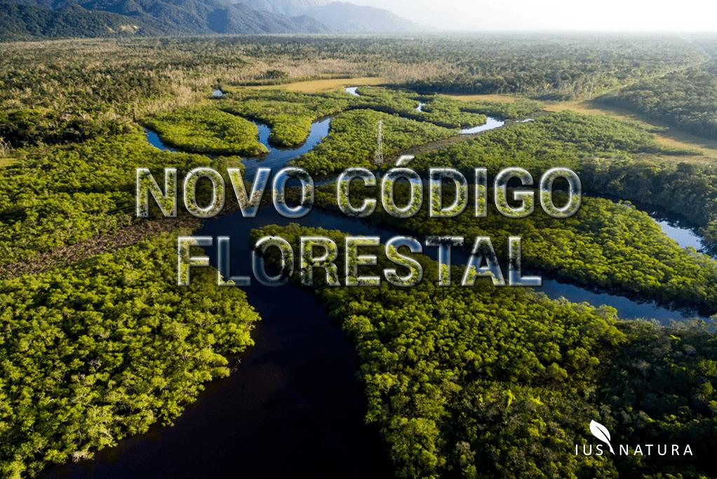 Novo Código Florestal: julgamento de novas ações