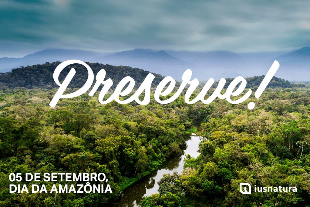 Dia da Amazônia | Floresta reduz absorção de carbono
