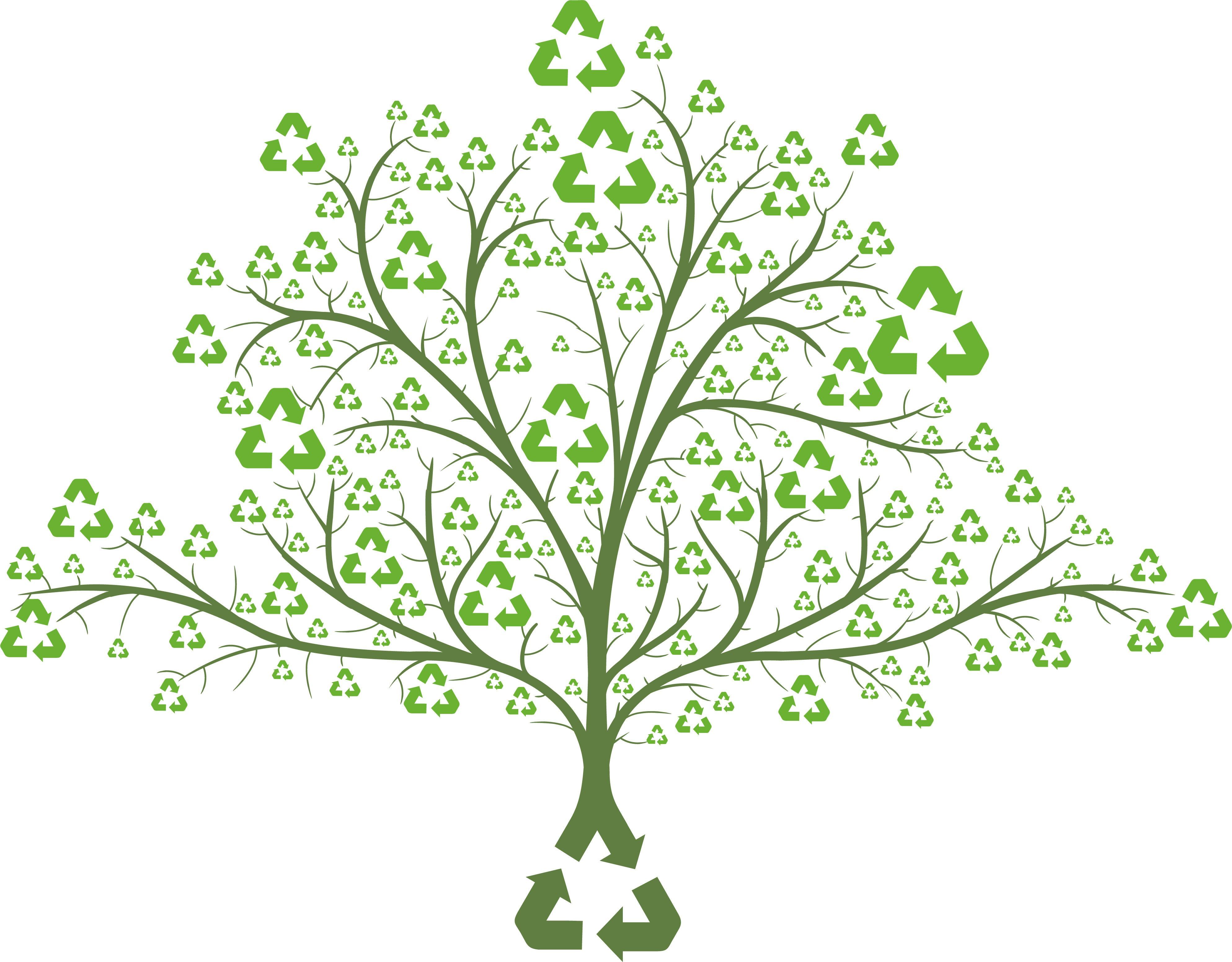 Conheça os tipos de licenças ambientais da legislação brasileira
